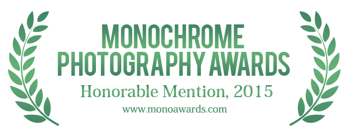 monoawards_2015_hm